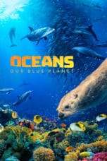 Nonton Film Oceans: Our Blue Planet (2018) Ganool Lk21 Indoxx1 Subtitle Indonesia Streaming Download