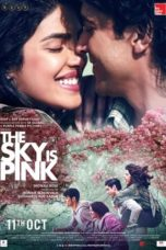 Nonton Film The Sky Is Pink (2019) Ganool Lk21 Indoxx1 Subtitle Indonesia Streaming Download